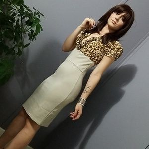 Imported Leopard Pencil Skirt Dress